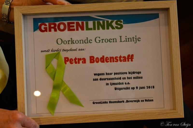 groene lintjes (8)
